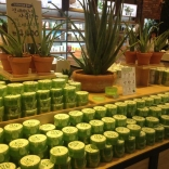 franchise-nature-republic2.jpg