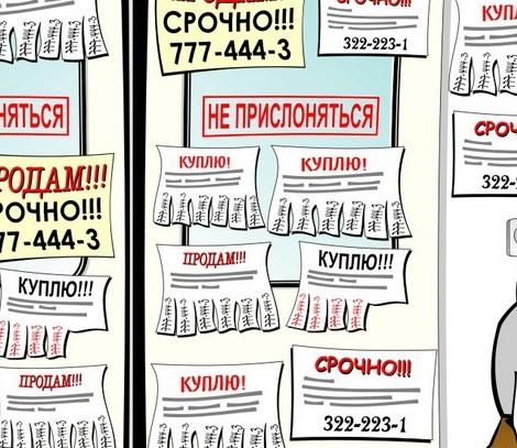 franchise-alekseev-reklama.jpg