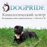 franchise-dogpride-1.jpg