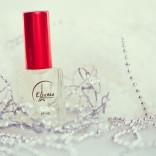 franchise-essence-perfumum-1.jpg