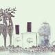franchise-essence-perfumum-2.jpg