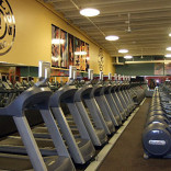 franchise-golds-gym-2.jpg