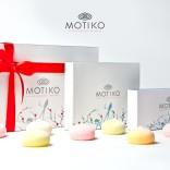 franchise-motiko-1.jpg
