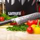franchise-samura-3.jpg