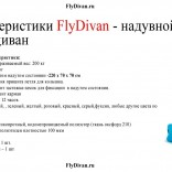 franchise-flydivan-3.jpg