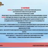 franchise-hayban-2.jpg