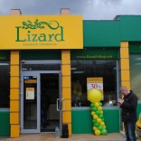 franchise-lizard-3.jpg