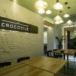 franchise-crocodile-1.jpg