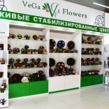 franchise-vega-flowers1.jpg