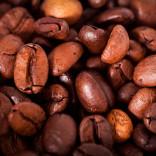 franchise-tea-coffee-garden-3.jpg