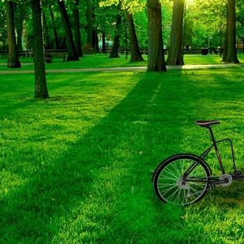 franchise-star-bike-coffee.jpg